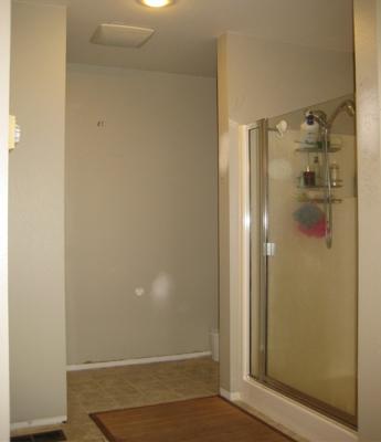 Master Bath Revamp Part 1 Before Corinne Gail Interior Design